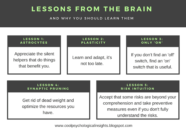 Life lessons from the brain