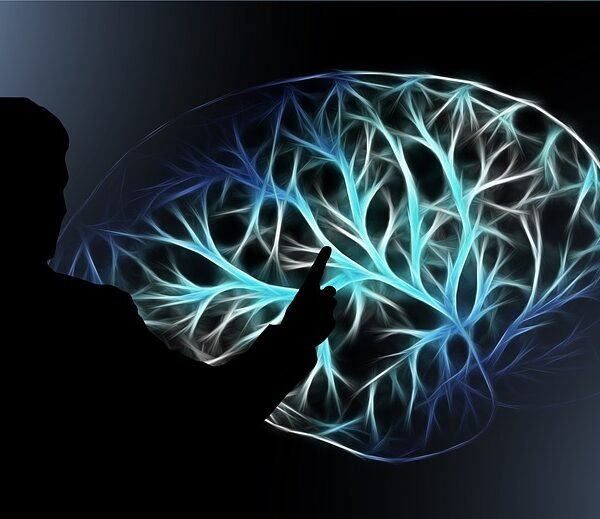In What Form Is Memory Stored In The Brain & Mind? An Introduction