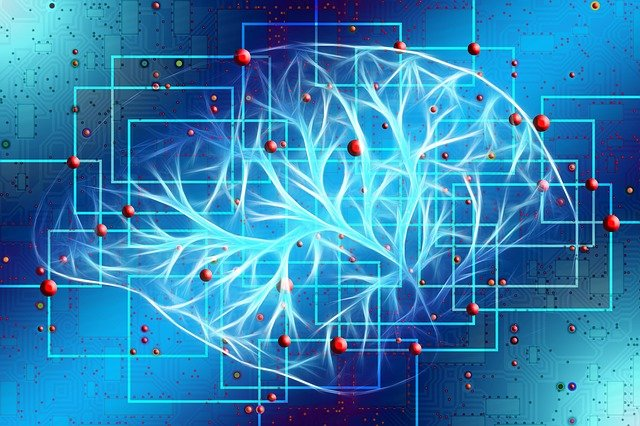 Brain-based learning strategies, theory, and concepts