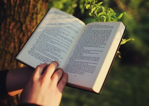 The Effect of Reading Fiction on The Brain: Do Books Increase Empathy?
