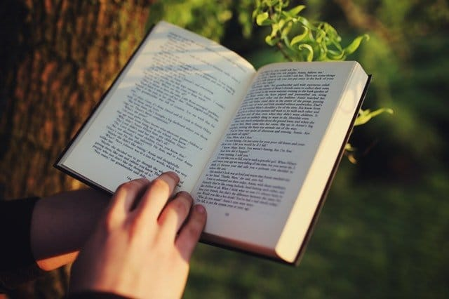 The effect of reading on the brain: Can books increase empathy?