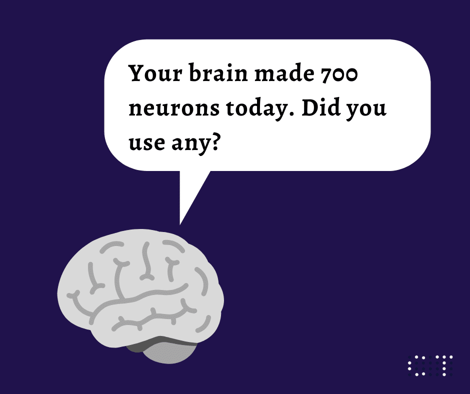 how to use the brain