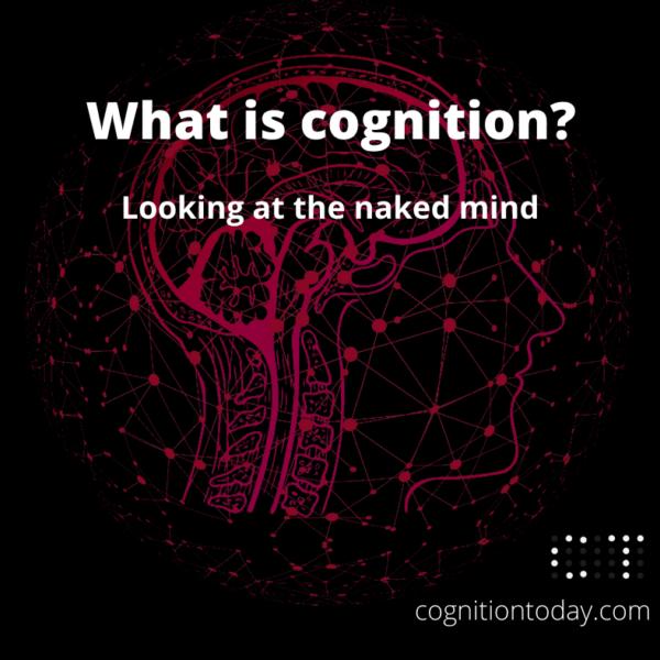 Cognition 101: Executive functions, Cognitive processes & abilities