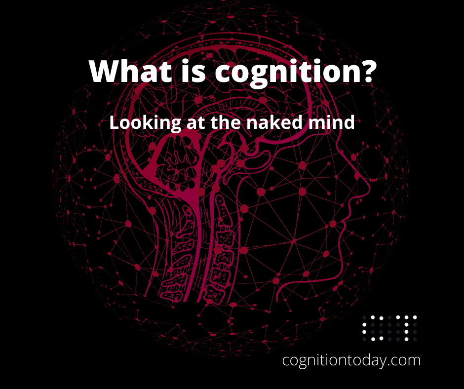 What is cognition?