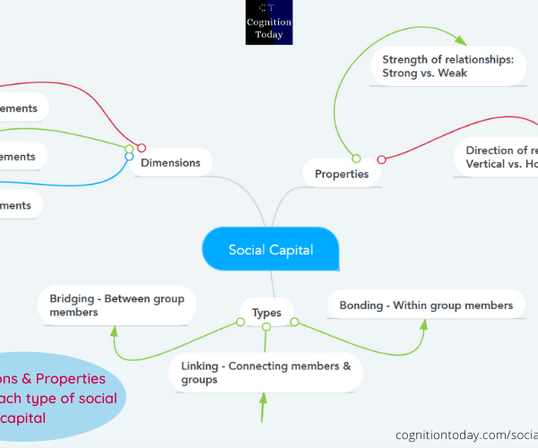 Social Capital: Everything you need to know